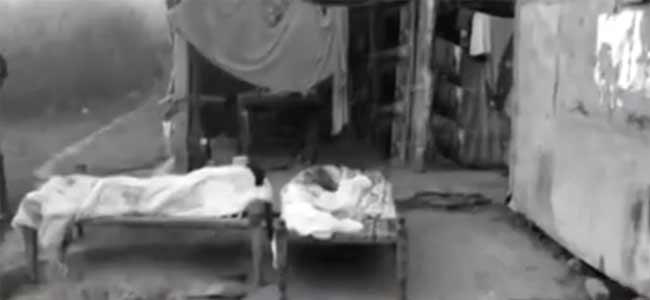 Telangana: Elderly couple killed in Kothagudem