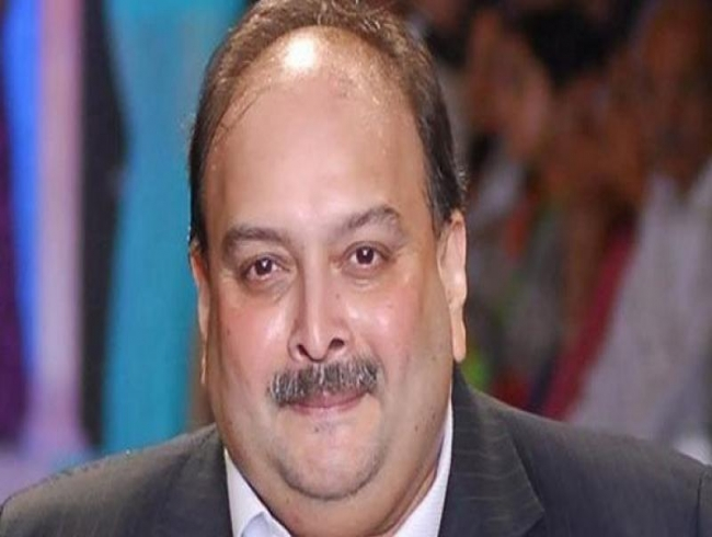'Innocent until proven guilty': Choksi's lawyer after Antigua PM's remark