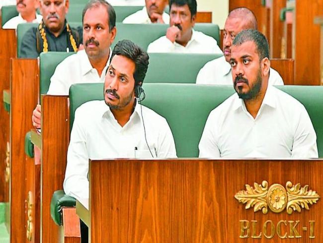 Y S Jagan Mohan Reddy bristles, wonders if N Chandrababu Naidu guarded donkeys