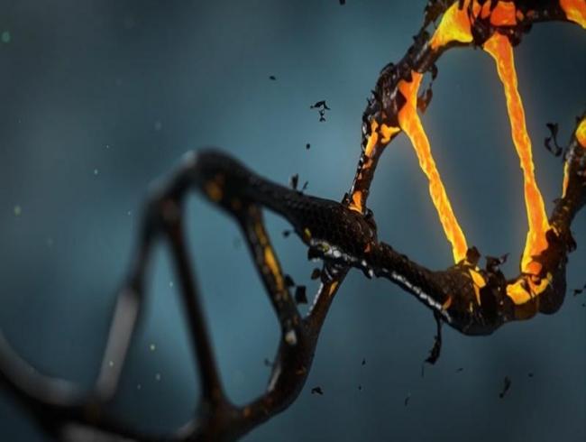 Scientists map genetic codes of 3,000 dangerous bacteria