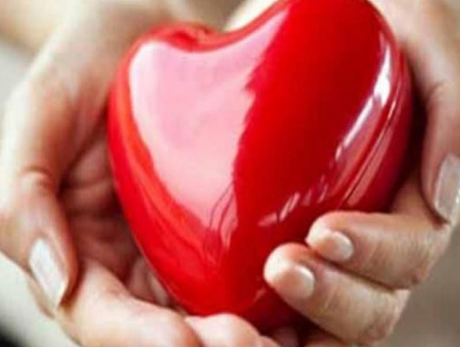 Lead, mercury in blood raises cholesterol levels, says study