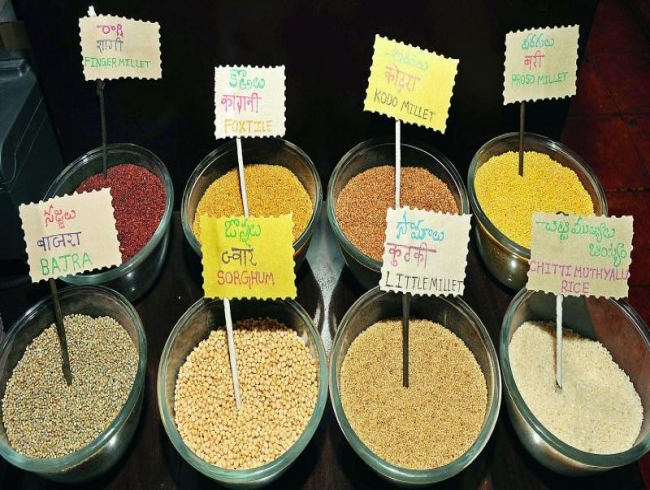 Tapping into the magic of millets