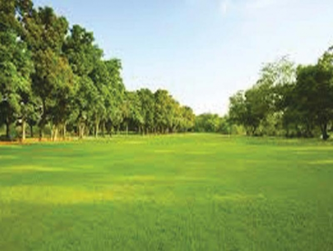 Green space reduces risk of lifestyle diseases, says study