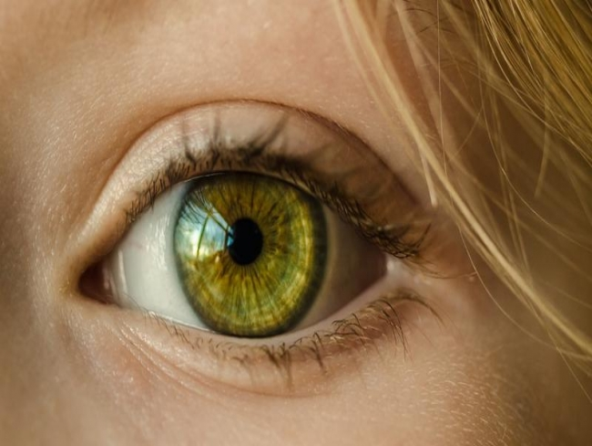 New gene-delivery system can ward off hereditary blindness