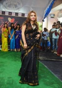 Silk India Expo Fashion Show@Hyd Albums