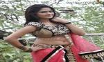 Harini Reddy Special Gallery