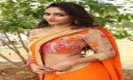 Pooja launches Pochampally Mela IKAT@ECIL Albums